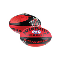 Essendon Bombers Song Sherrin